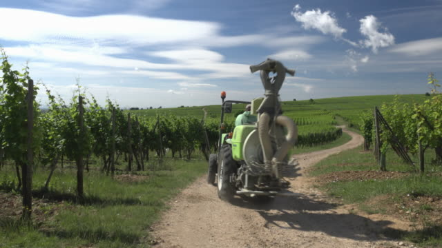 a farmer drives a tractor to fertilize the vineyard - crop sprayer stock videos and b-roll footage