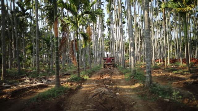 A farmer driving a Mahindra 475 DI tractor manufactured by Mahindra Mahindra Ltd transports soil to an areca nut farm in the village of Kuragunda in...