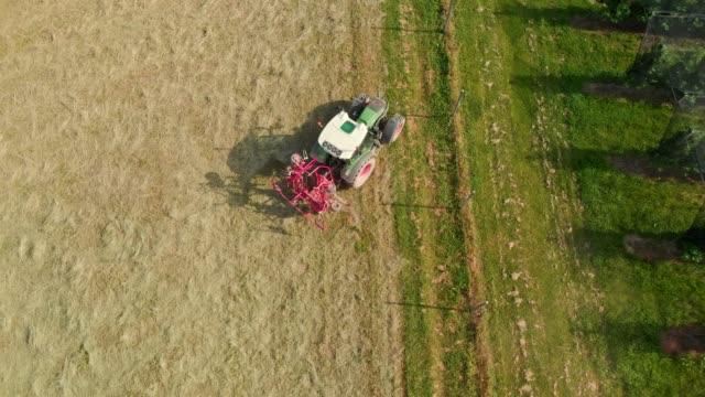 landwirt fährt einen traktor vom feld - cereal plant stock-videos und b-roll-filmmaterial