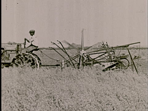 ms, pan, composite, b/w, farmer driving harvesting tractor in field - agricultural equipment stock videos & royalty-free footage