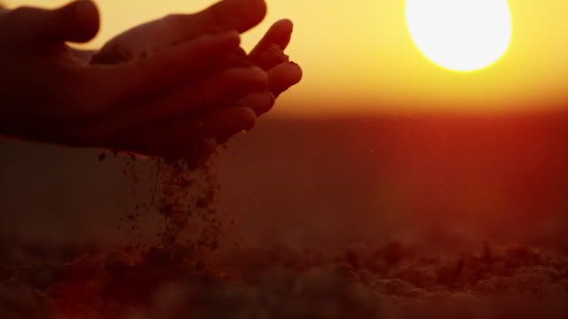 slo mo farmer examining dirt on a field at sunset - produttore video stock e b–roll