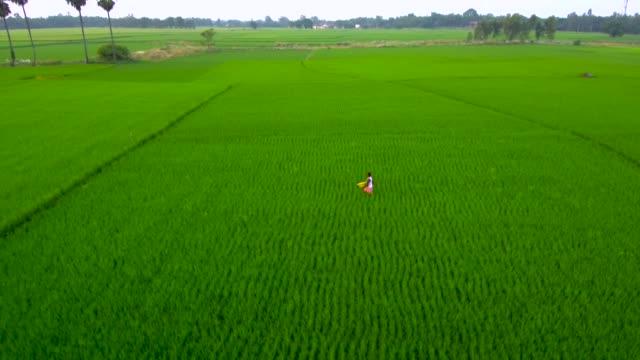 farmer fertilizing his farming land - india stock videos & royalty-free footage