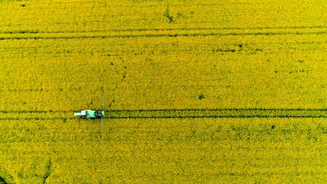 Landwirt Düngung jungen Raps Feld mit Pestiziden GVO.