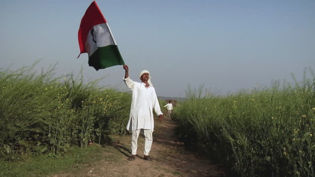 ws farmer fluttering indian flag / bhondsi, gurgaon, haryana, india - indian flag stock videos & royalty-free footage