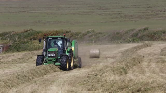 farmer gathering in hay in a field on walney island, cumbria, uk. - tractor stock videos & royalty-free footage