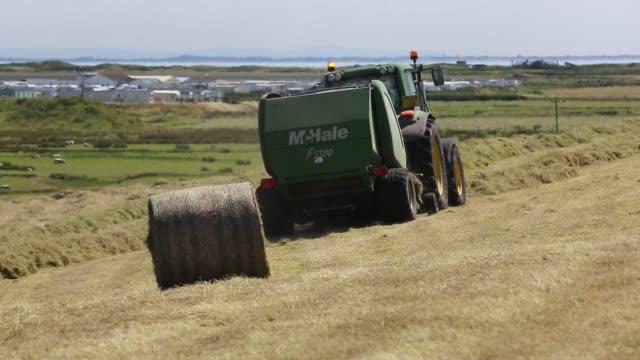 farmer gathering in hay in a field on walney island, cumbria, uk. - agricultural machinery stock videos & royalty-free footage