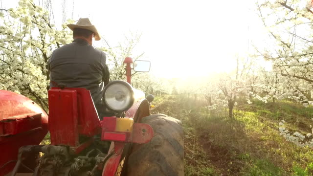 farmer going through a farm on a  tractor - tractor stock videos & royalty-free footage