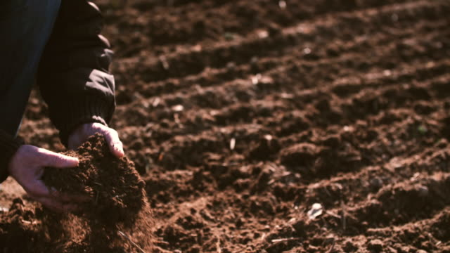 Farmer hands holding and pouring back organic soil. Soil, Agriculture, Sunlight.