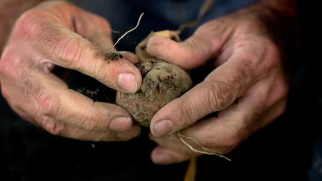 ZEITLUPE: Landwirt Hände