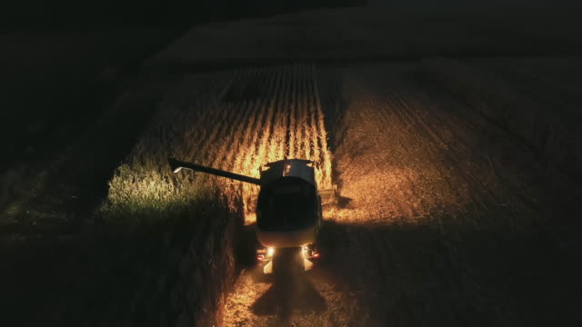 aerial farmer harvesting corn at night - agricultural machinery stock videos & royalty-free footage