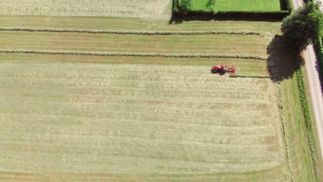 landwirt erntet heu - cereal plant stock-videos und b-roll-filmmaterial
