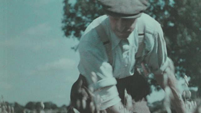 1938 montage farmer harvesting hayfield with scythe / united kingdom - scythe stock videos and b-roll footage