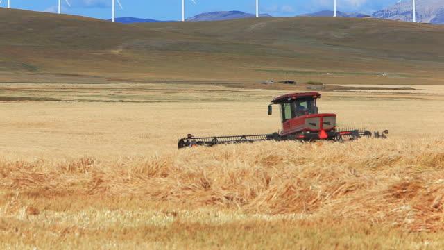 農家の収穫ウィイートフィールド - コンバイン点の映像素材/bロール