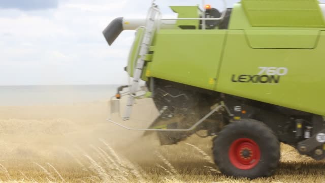farmer harvesting wheat on a farm near barmston, east coast, yorkshire, uk. - dust stock videos & royalty-free footage
