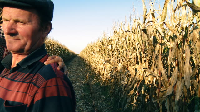 HD SLOW MOTION: Farmer Holding Child In Corn Field