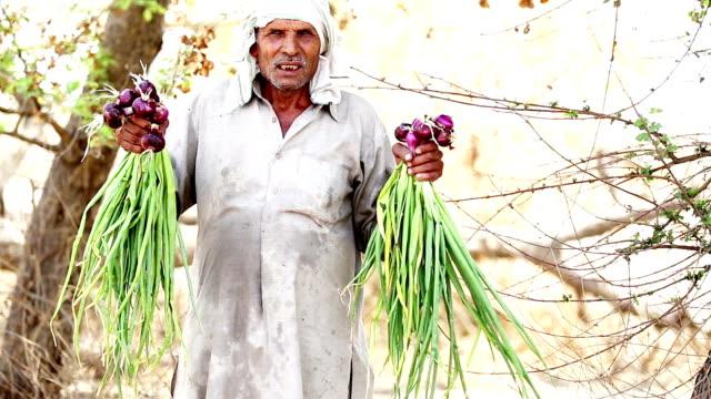 vidéos et rushes de agriculteur détenant des cultures d'oignon - indien d'inde