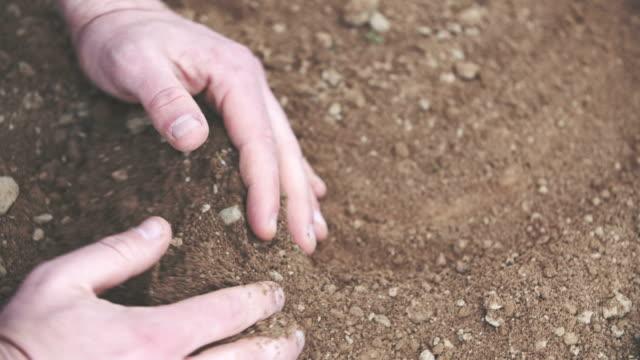Farmer holding pile of soil in hands. Examining soil before planting grain.