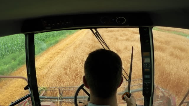 ld farmer in a combine harvesting wheat - agricultural equipment stock videos & royalty-free footage