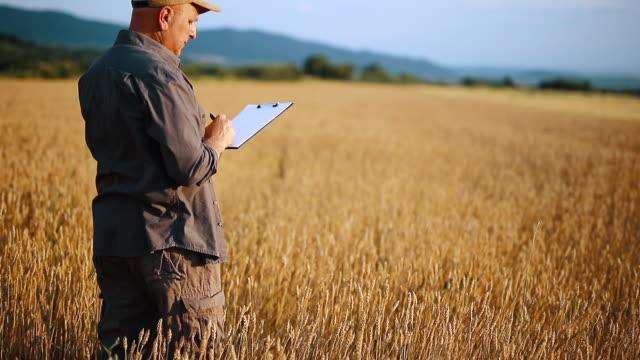 穀物畑の農家 - 農学者点の映像素材/bロール