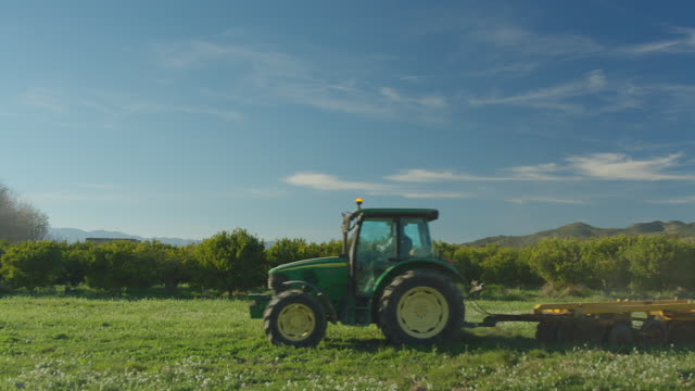 a farmer in a tractor crosses from right to left. the man works, plows the pasture field. orange trees and a blue sky in saturated colors on the background - オレンジ果樹園点の映像素材/bロール