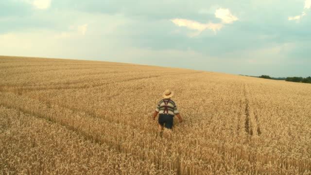 HD CRANE: Farmer In A Wheat Field