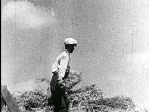 vídeos y material grabado en eventos de stock de b/w 1940 farmer in cap pitching hay - bieldo equipo agrícola