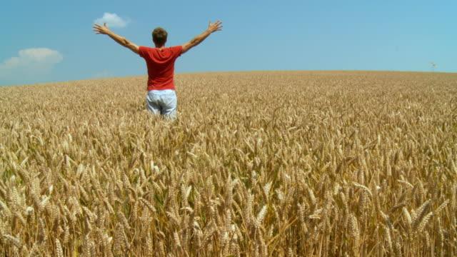 vidéos et rushes de hd : agriculteur dans le champ - bras humain
