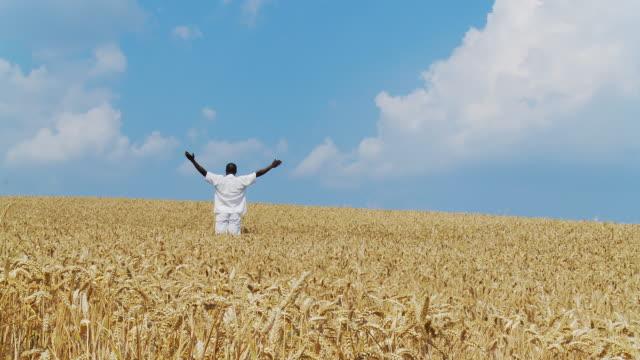 HD DOLLY: Farmer In His Field