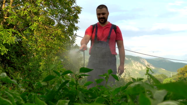 farmer is spraying herbicide on garden - herbicide stock videos & royalty-free footage
