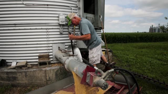 farmer john duffy loads soybeans from his grain bin onto a truck before taking them to a grain elevator on june 13 2018 in dwight illinois us soybean... - tariff stock videos & royalty-free footage