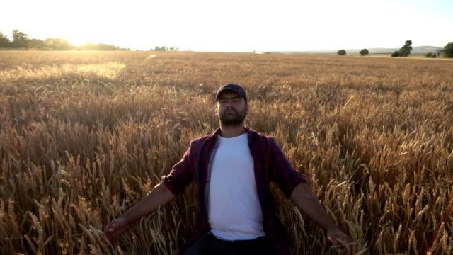 農家が作物をジャンプ - 農学者点の映像素材/bロール