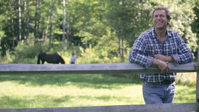 vidéos et rushes de  ds farmer leaning against a fence in a grassy paddock / stowe, vermont, united states - s'appuyant