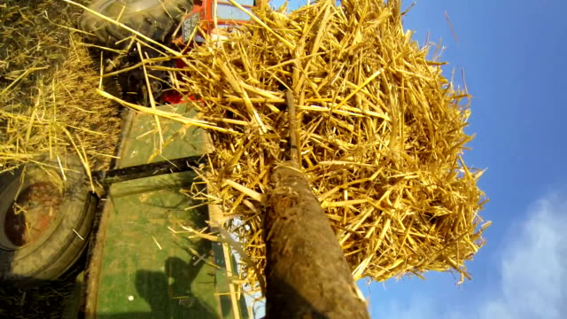 pov farmer loading bales on a trailer - garden fork stock videos & royalty-free footage