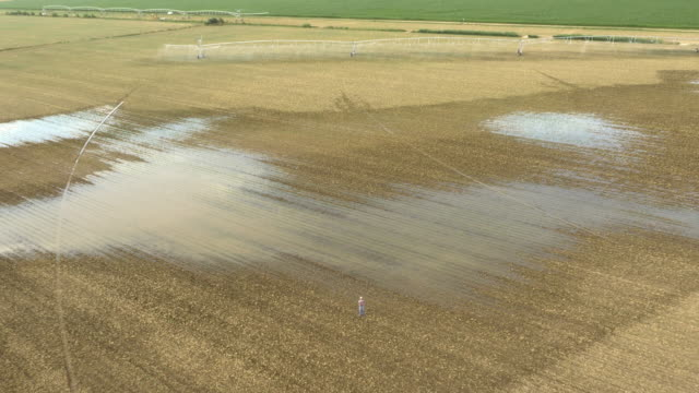 AERIAL Farmer looking at devastated field