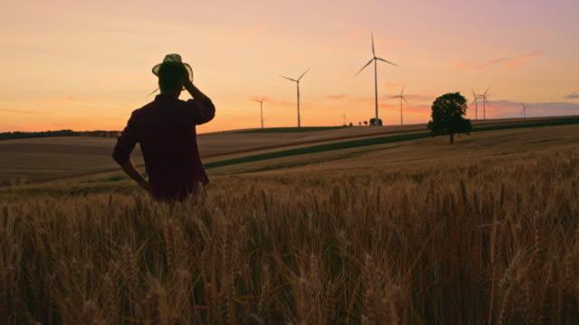 vídeos de stock e filmes b-roll de ds farmer looking at wind turbines in the middle of a wheat field at dusk - indústria de comidas e bebidas