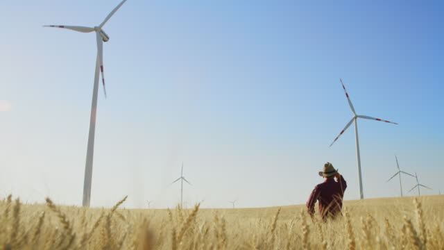 cs farmer looking at wind turbines in the middle of a wheat field - tartan stock videos & royalty-free footage