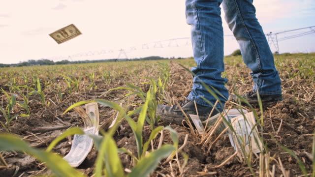 LA Farmer losing money