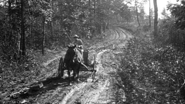 farmer on horse drawn cart down muddy country road / cart almost gets stuck farmer coaxes horse along - 1916 stock videos & royalty-free footage