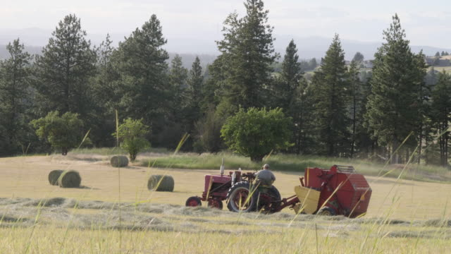 farmer on tractor bailing hay - hay stock videos & royalty-free footage