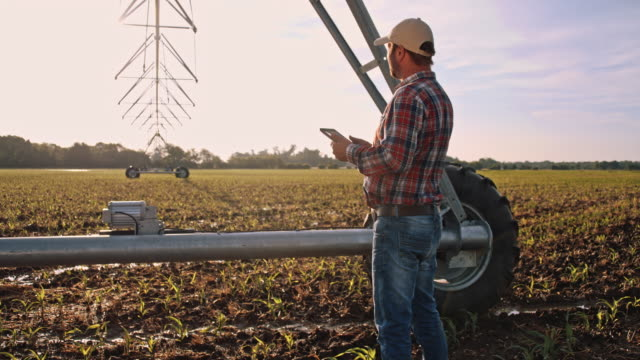 ds landwirt arbeiten agricultural sprinkler - cereal plant stock-videos und b-roll-filmmaterial