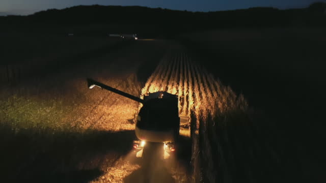 aerial farmer operating combine harvester on a corn field at night - agricultural machinery stock videos & royalty-free footage