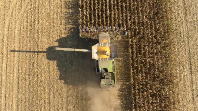 stockvideo's en b-roll-footage met luchtfoto boer operationele combine harvester op het veld - aanhangwagen