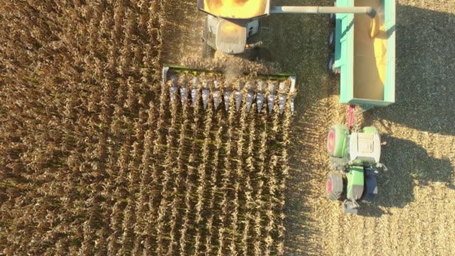 フィールド上の農夫営業のコンバインを空中 - コンバイン点の映像素材/bロール
