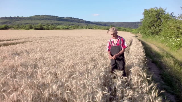 Farmer over looking the success of his crops slowmotion