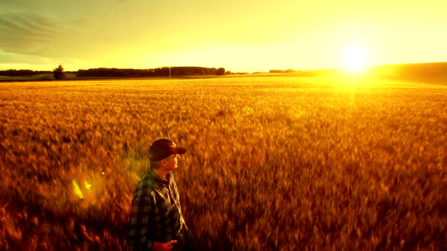 Farmer over looking the success of his crops.