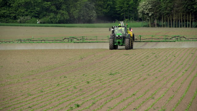 farmer pesticides on field - insecticide stock videos & royalty-free footage