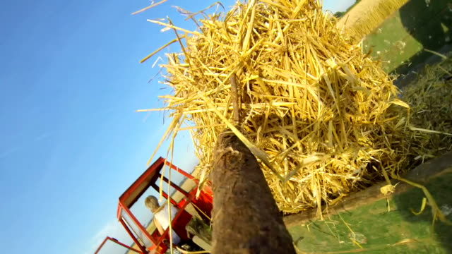 slo mo farmer picking up bales with gardening fork - garden fork stock videos & royalty-free footage