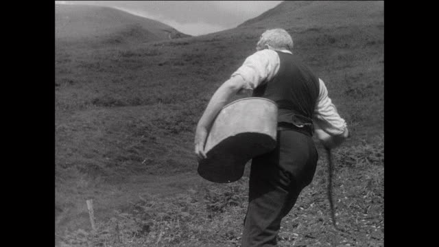 montage farmer planting seeds in field / aberystwyth, wales - aberystwyth stock videos & royalty-free footage