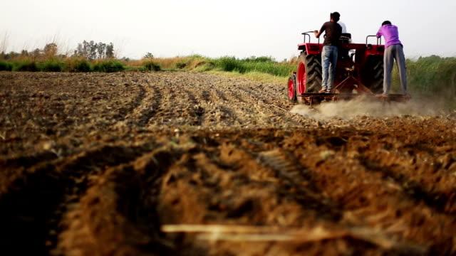 farmer gepflügt field - haryana stock-videos und b-roll-filmmaterial