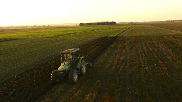 aerial farmer plowing the field at dawn - agricultural machinery stock videos & royalty-free footage